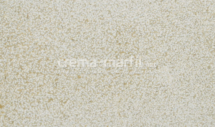 Crema Marfil marble bush-hammered